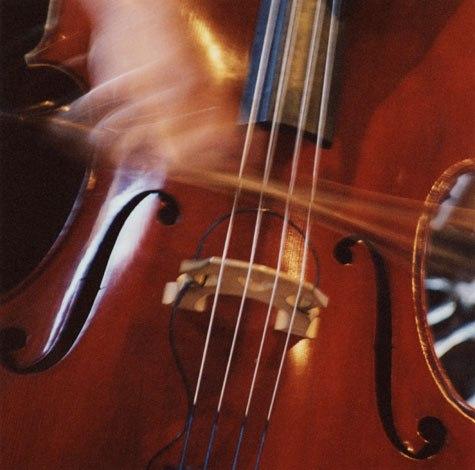 Audition de contrebasse et basse électrique